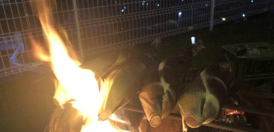 焚き火で焼きトウモロコシ