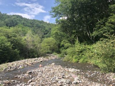 立場川キャンプ場の川