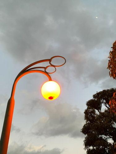 夜は電球のチェリーが怪しく光ります